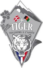 Logo_GTIA_Tiger.jpg